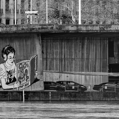 Quai du Rhône à Lyon par patrick69220