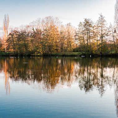 fin de journée d'automne par LABADIE