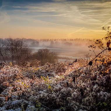 L'aube par kristy_sax
