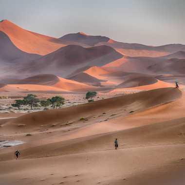 Sur le fil des dunes par Jeananne