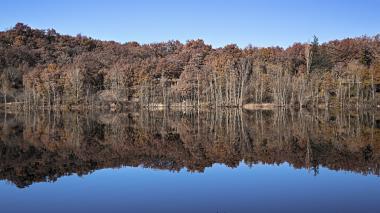 Lac de la Roucarié (81) meilleur qualité: http://www.flickr.com/photos/marcvenon/11402054536/  Marc par Marc_1468