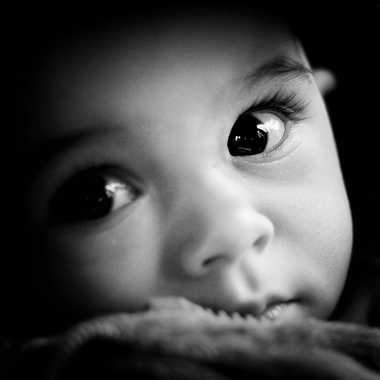 L'oeil du tigrou par Nimo