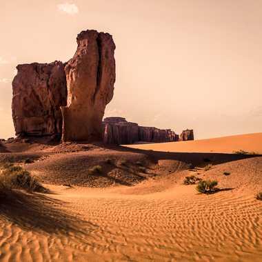Au pays des sables par fennecdz