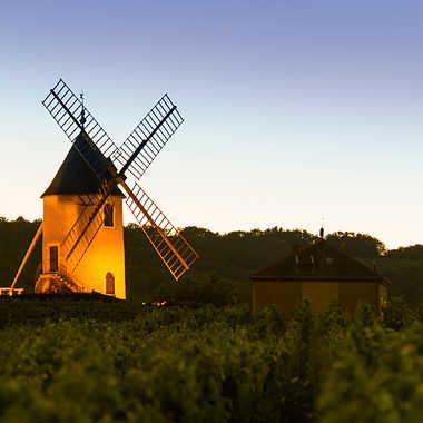 Moulin à vent en beaujolais par patrick69220
