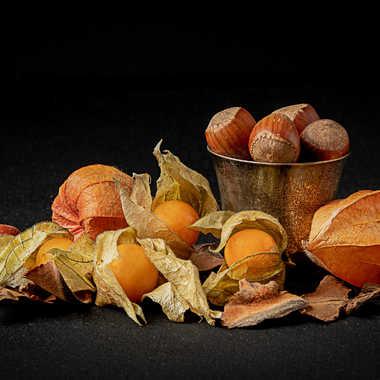 Coques et Fruits par Buissem