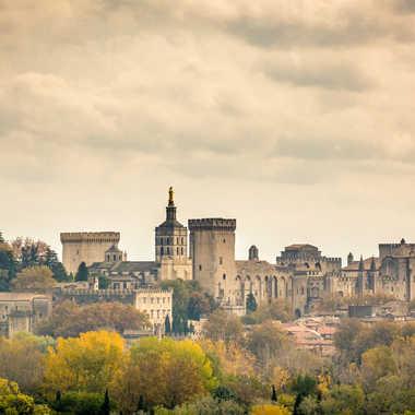 Avignon Palais des Papes couleur Automnale  par Jose Fajardo
