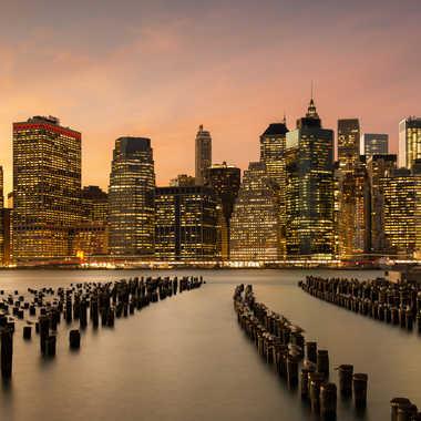 Les mouettes veillent sur Manhattan par Grymskit