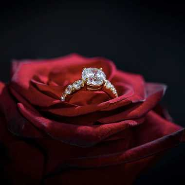 Diamant éternel sur rose éphémère par Guy07