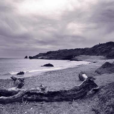Balade sur la plage par Louis78