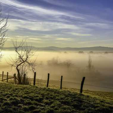 Brouillard matinal par DFluzin