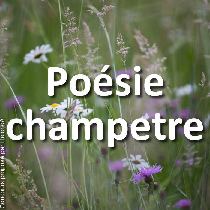 Concours Photo - Poésie champetre