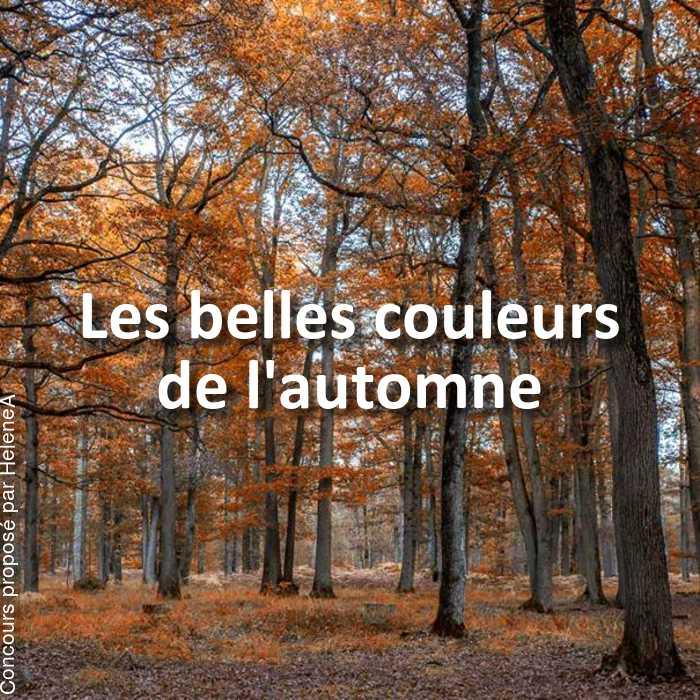 Concours Photo - Les belles couleurs de l'automne