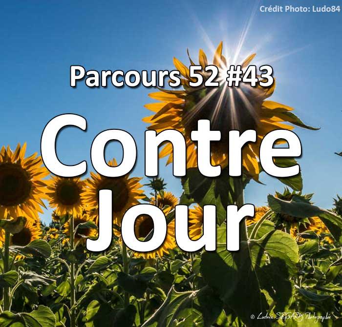 Concours Photo - Contre Jour: Parcours 52 #43