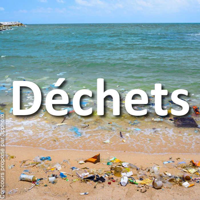 Concours Photo - Déchets