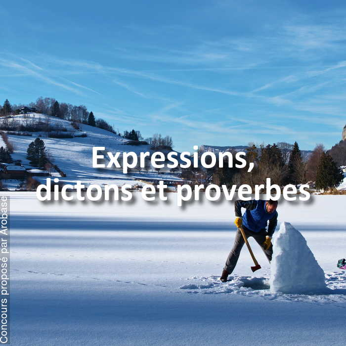 Concours Photo - Expressions, dictons et proverbes