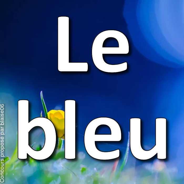 Concours Photo - Le bleu