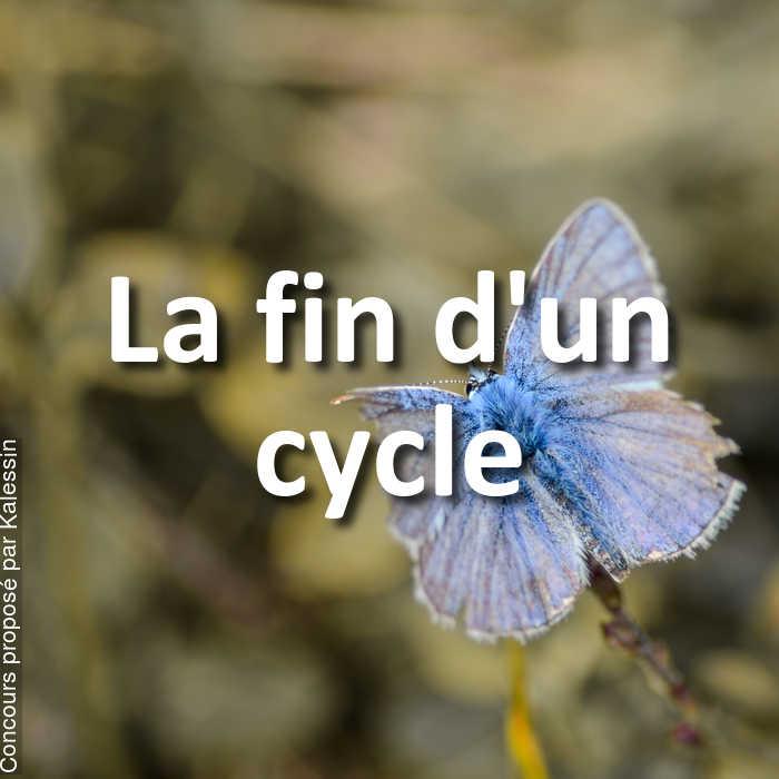 Concours Photo - La fin d'un cycle