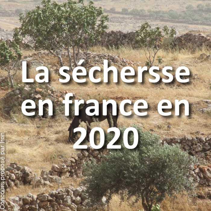Concours Photo - La séchersse en france en 2020