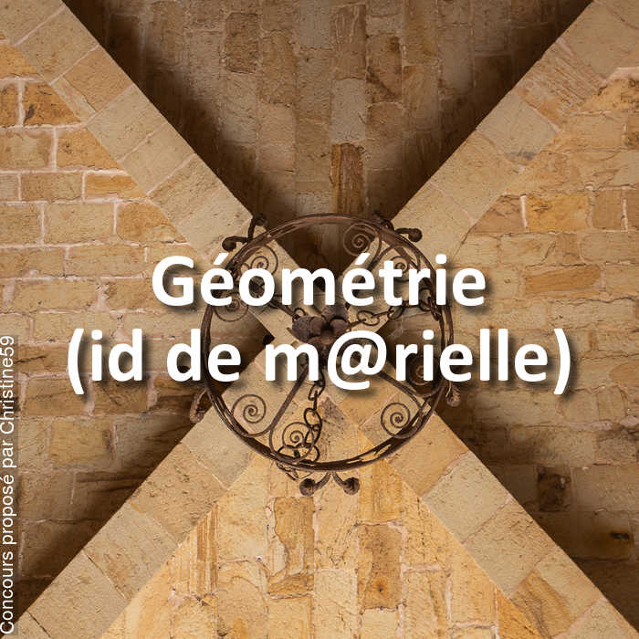 Concours Photo - Géométrie (id de m@rielle)