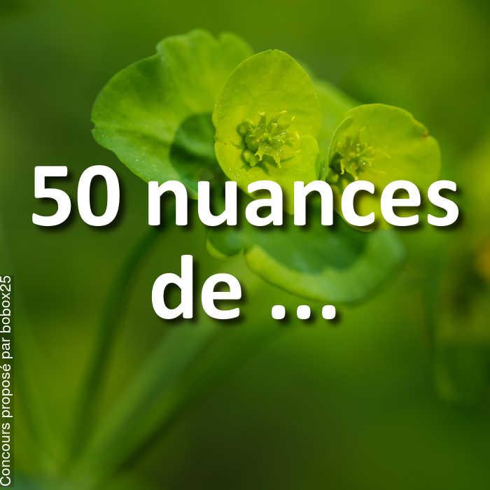 Concours Photo - 50 nuances de ...