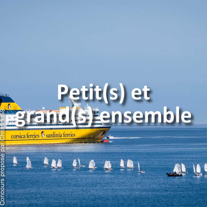 Concours Photo - Petit(s) et grand(s) ensemble