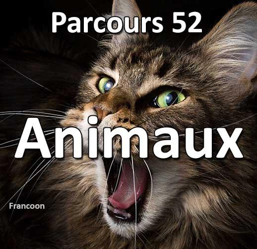 Concours Photo - Animaux - Parcours 52 #42