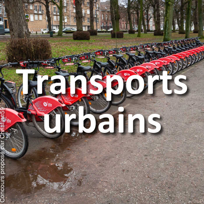 Concours Photo - Transports urbains