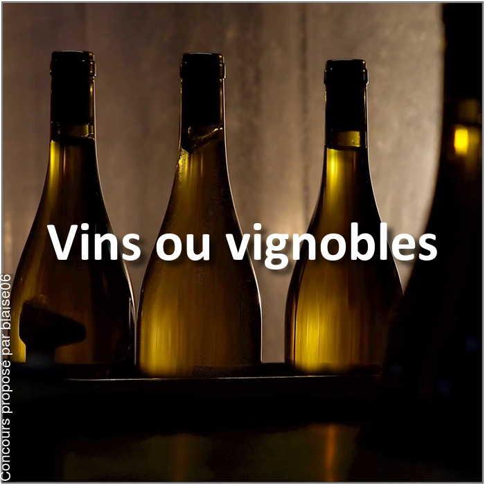 Concours Photo - Vins ou vignobles
