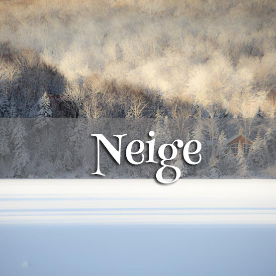 Concours Photo - Neige