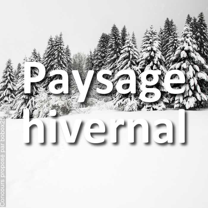 Concours Photo - Paysage hivernal
