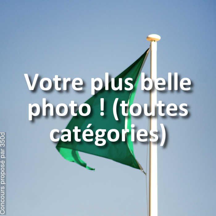 Concours Photo - Votre plus belle photo ! (toutes catégories)