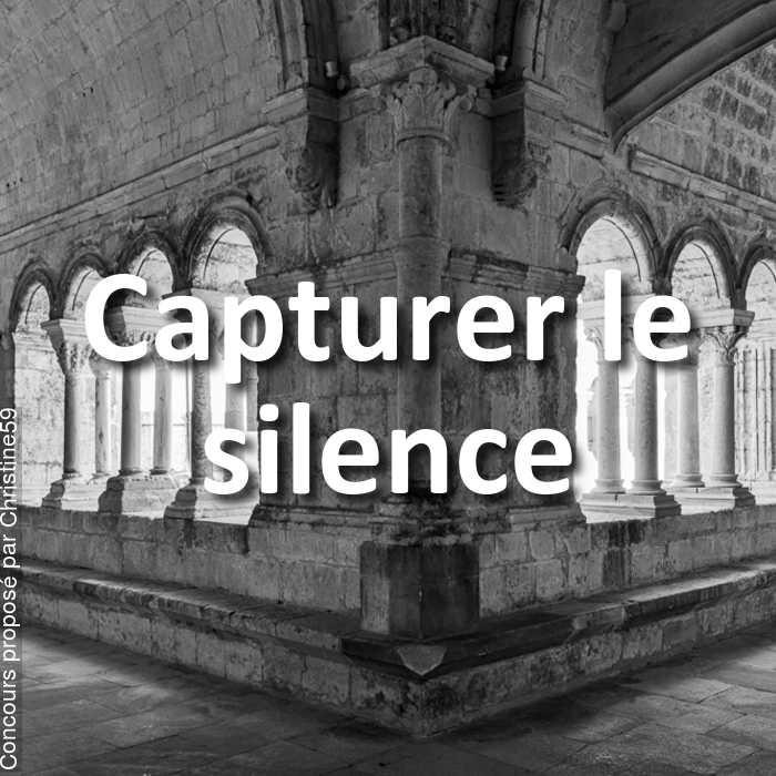 Concours Photo - Capturer le silence