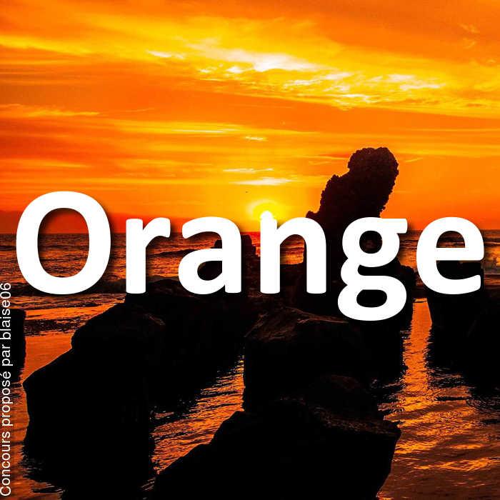 Concours Photo - Orange