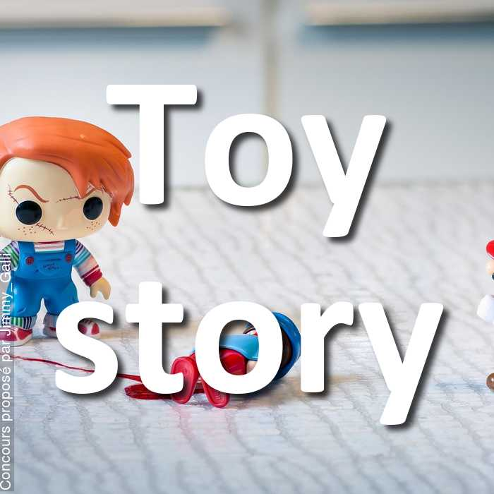 Concours Photo - Toy story