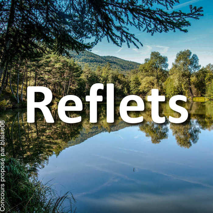Concours Photo - Reflets