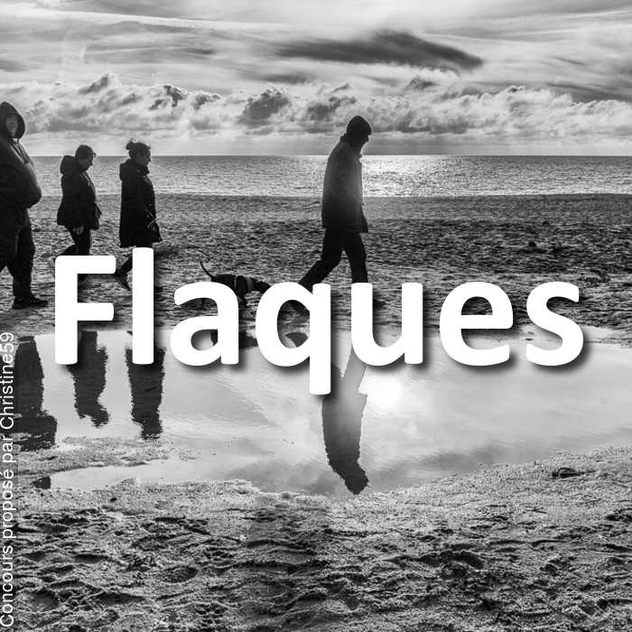 Concours Photo - Flaques