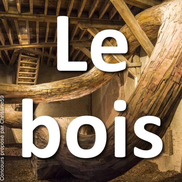 Concours Photo - Le bois