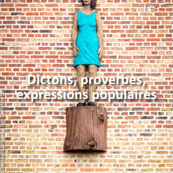 Concours Photo - Dictons, proverbes, expressions populaires