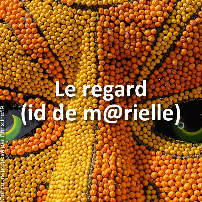 Concours Photo - Le regard (id de m@rielle)