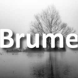 Concours Photo Brume