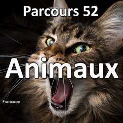 Concours Photo Animaux - Parcours 52 #42