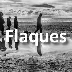 Concours Photo Flaques